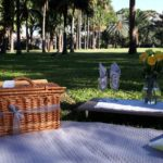 LITTLE MISS SUNSHINE PICNIC SET UP